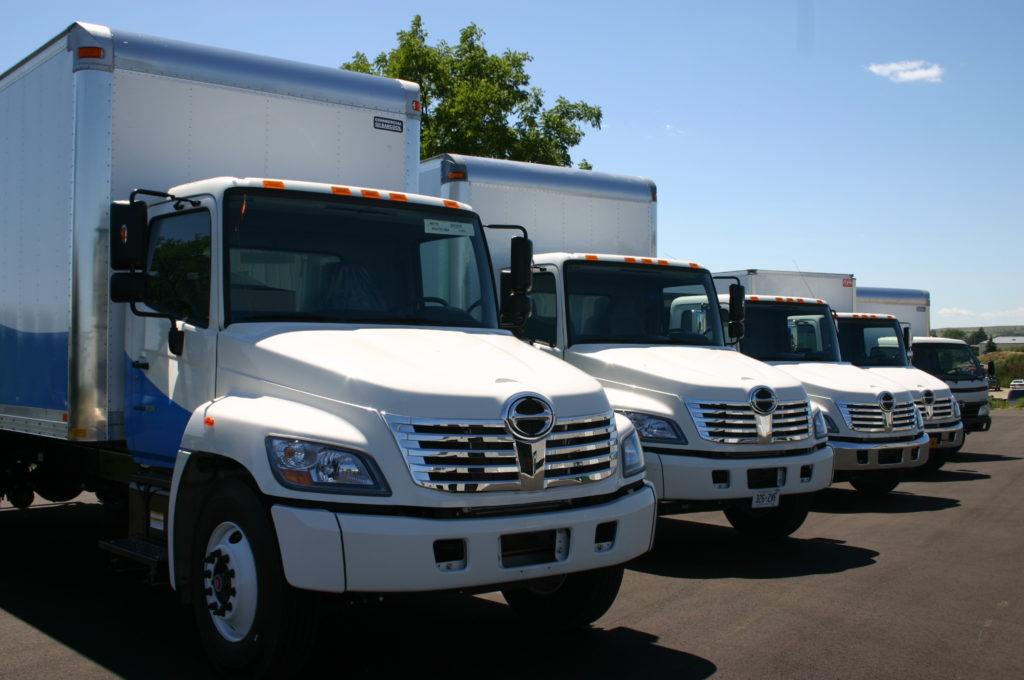 hino trucks lined up
